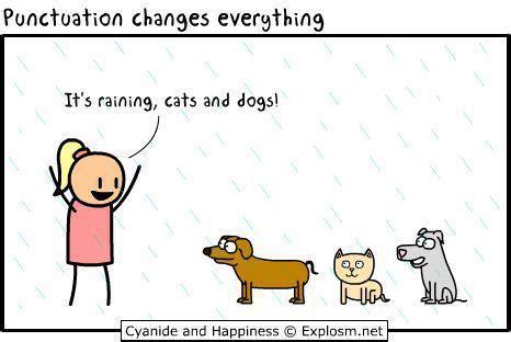 Cats vs dogs essay conclusion